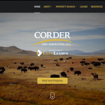 Corder and Associate Website Design and Branding